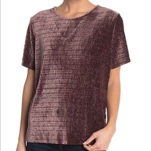 Love, Fire Velvet Short Sleeve Top Mauve Medium